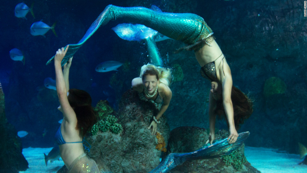 The Mystic Mermaids perform family-friendly shows at Denver's Downtown Aquarium.