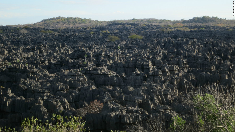 As a hotspot for biodiversity and with critically endangered animals surviving in this unique environment, Madagascar attracts tourists from all over the world.