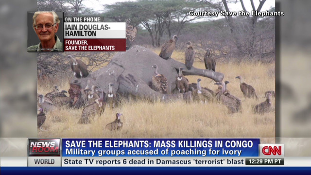 mass elephant slaughters for ivory_00045601