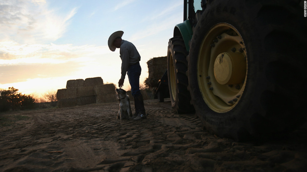 Rancher Gary Wollert pauses before heading out for work on August 23 near Eads, Colorado. The nation's severe drought has been especially hard on cattlemen. Much of eastern Colorado and virtually all of Nebraska and Kansas are still in extreme or exceptional drought, according to the University of Nebraska's Drought Monitor.