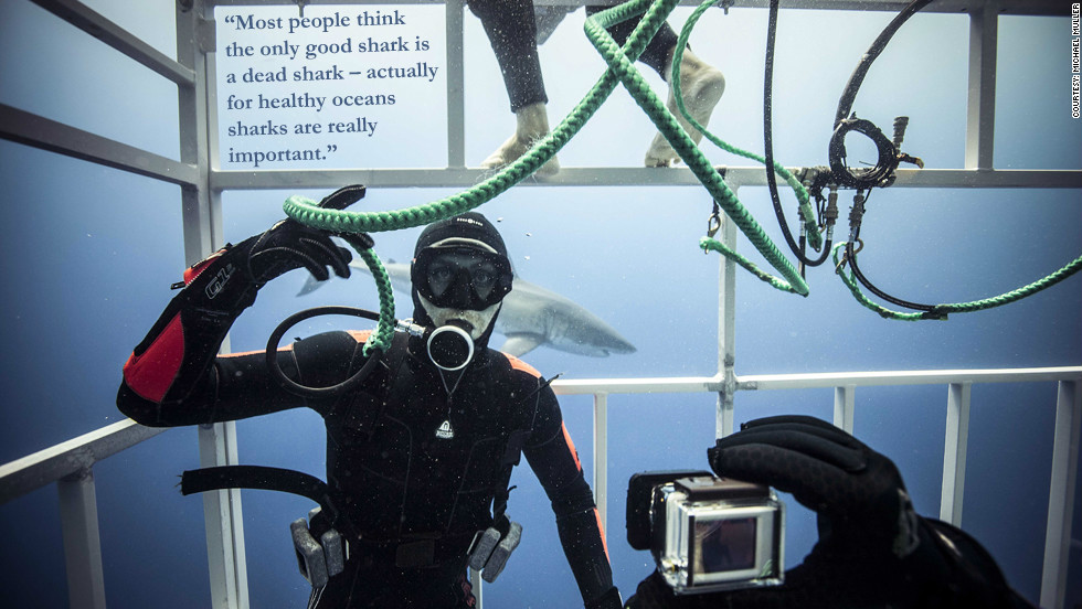 """Phillippe Cousteau: """"Most people think the only good shark is a dead shark -- actually for healthy oceans sharks are really important."""""""