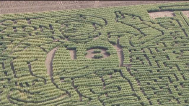 vo peyton manning corn maze_00000814