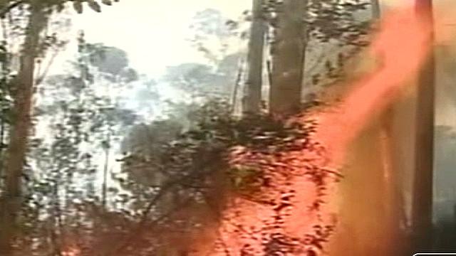 umaña ecuador forest fires_00001203