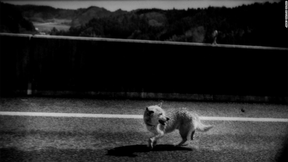 """A photo in the series """"Black Tsunami"""" about Japan's 2011 tsunami by James Whitlow Delano, an American photographer living in Japan."""