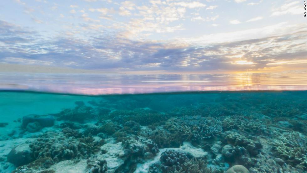 Wilson Island, Queenland, Australia