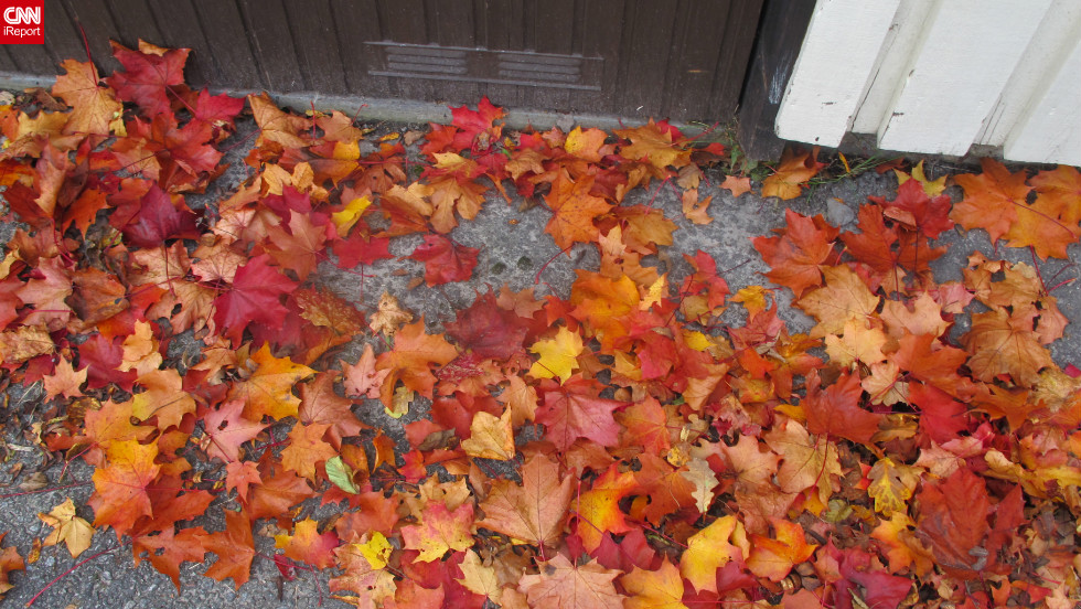 "Bright, crunchy leaves pile up on a <a href=""http://ireport.cnn.com/docs/DOC-855617"">Stockholm sidewalk</a>."
