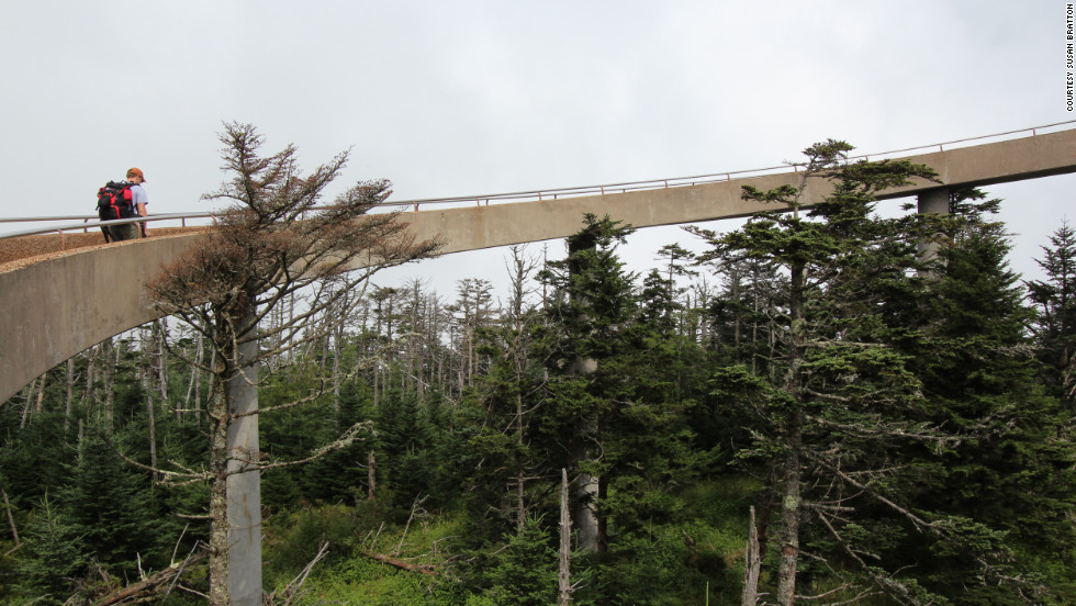Clingmans Dome in Great Smoky Mountains National Park is the highest point on the entire trail, at 6,643 feet.