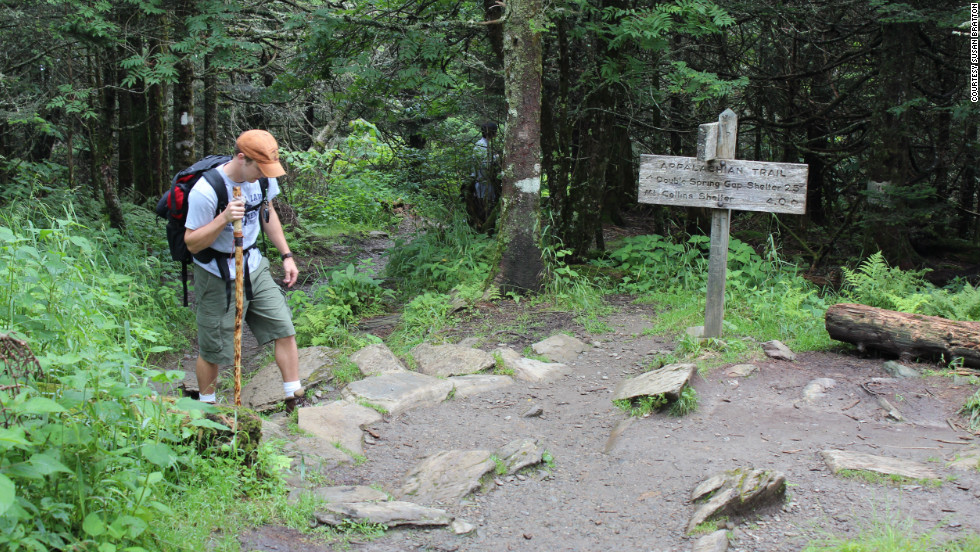 Walking up to Clingmans Dome in Great Smoky Mountains National Park, hikers may see the southern-most  Appalachian spruce-fir forest, black bears and red-cheeked salamanders.