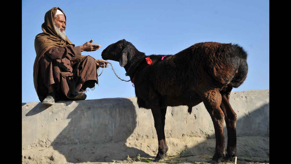 An Afghan man gestures toward a sheep at an animal market as he waits for customers in the outskirts of Jalalabad on Saturday, October 20.