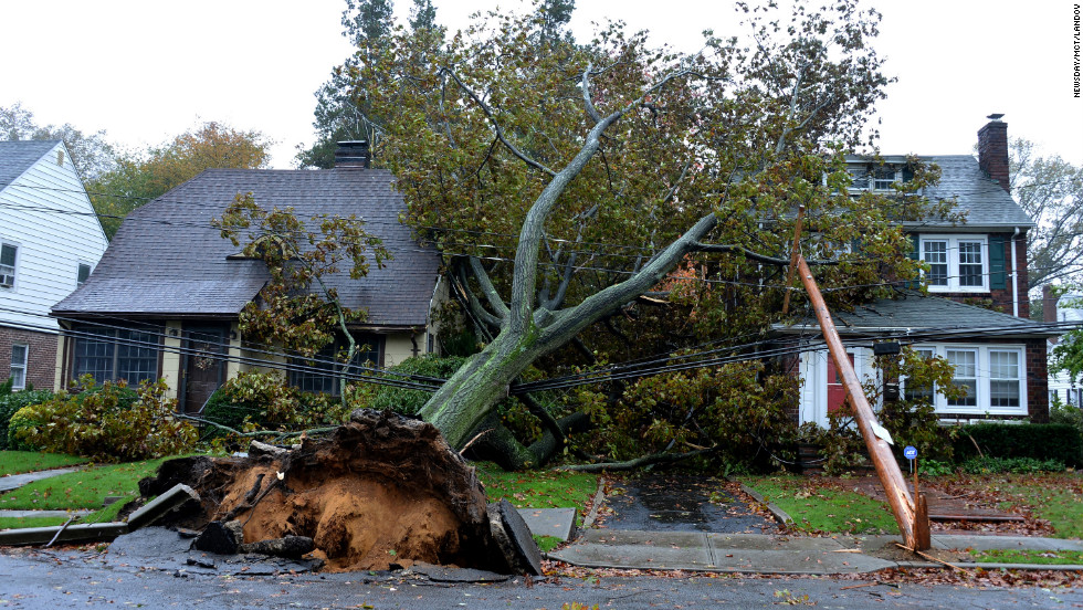 A downed tree and fallen power lines lie over homes Monday on Harvard Street in Garden City, New York.