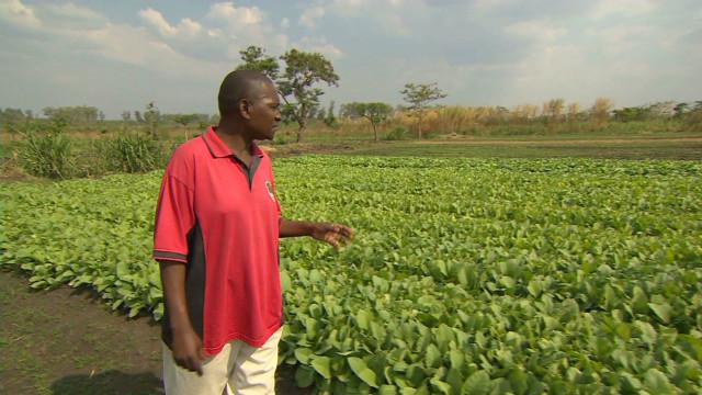 Tobacco industry under threat?