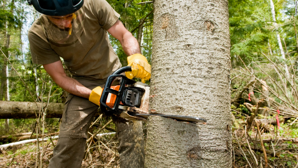 """""""[G]etting a chainsaw is like a chance to do something awesome,"""" said noahisaac. Ozzimark agreed: """"There can never be enough chainsaws and torches."""""""