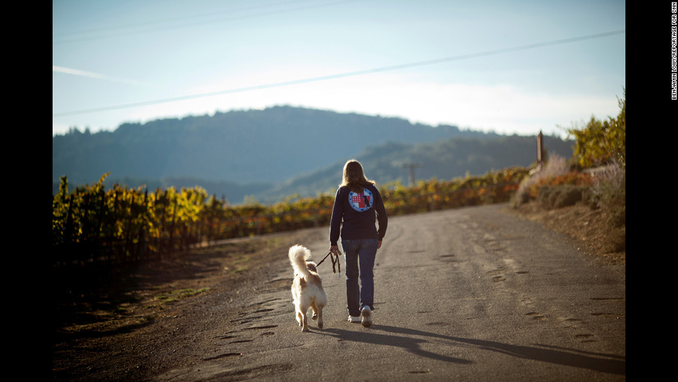"""""""Service dogs work,"""" Cortani said. """"Just ask any veteran who used to isolate (himself), get in fights, lost his family, had no hope for the future, thought about suicide. They will tell you. We can make a difference, and we owe them a chance to enjoy life again."""""""