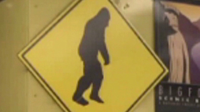 nr dna evidence proves Big Foot exists  _00000618
