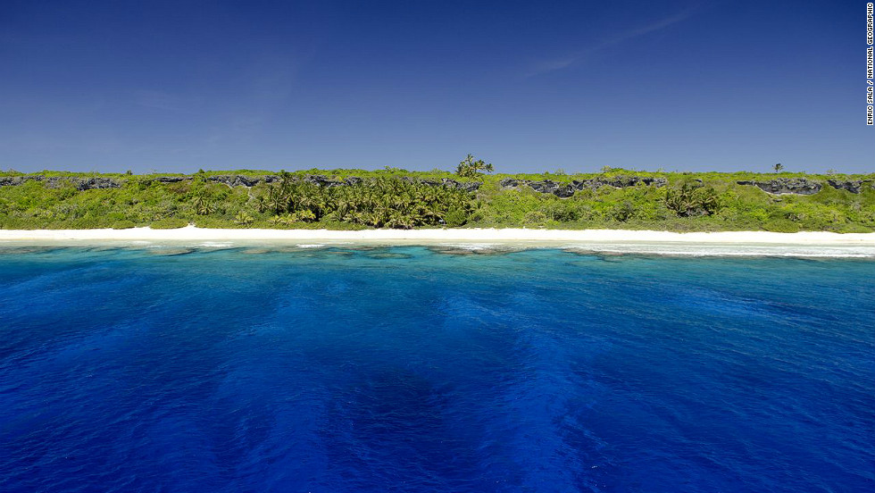 Henderson Island is a UNESCO World Heritage site which the United Nations says has 10 species of plant and four land birds which are endemic to the island.