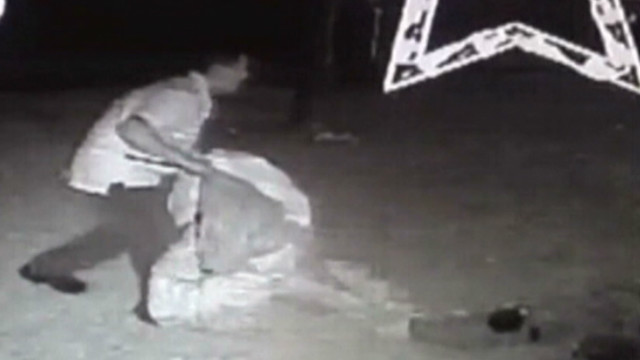 dnt tx thief caught stealing xmas decorations_00004805