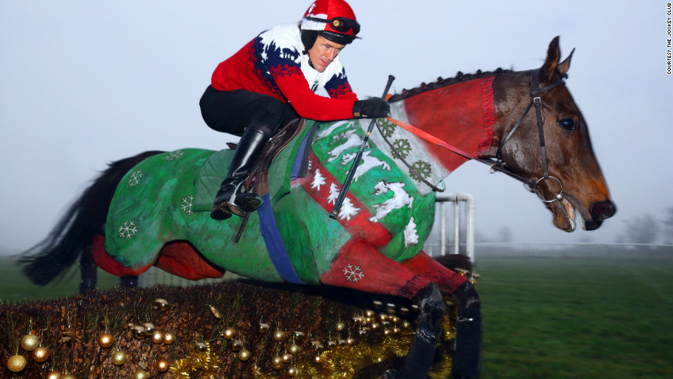 "Champion British jockey Tony ""AP"" McCoy dons a matching Christmas jumper for The Jockey Club's unique equine calendar. Race horse Dr. Livingstone was painted by Rossa."