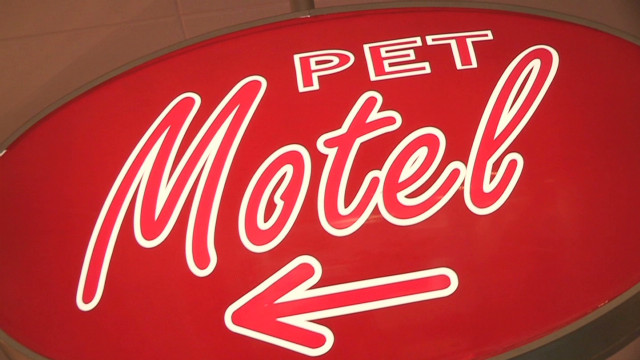Love motel for pets opens for business