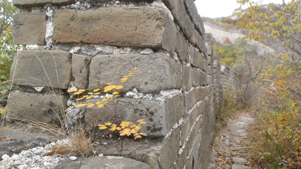 Although the wall has not been maintained for the last 450 years or so, the bricks and mortar dating from the Ming Dynasty are in surprisingly good condition, Olson says.