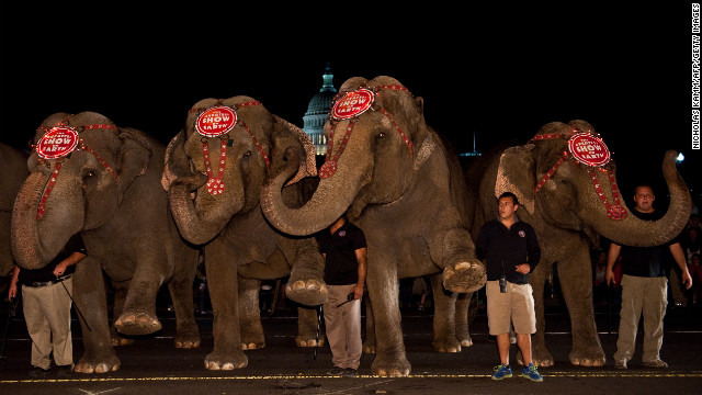The owners of Ringling Bros. and Barnum & Bailey Circus say allegations of elephant abuse were malicious.
