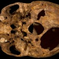 Richard III remains 9