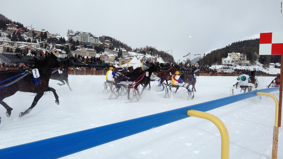 Each meeting features flat racing, skijoring and winter-style trotting (pictured).