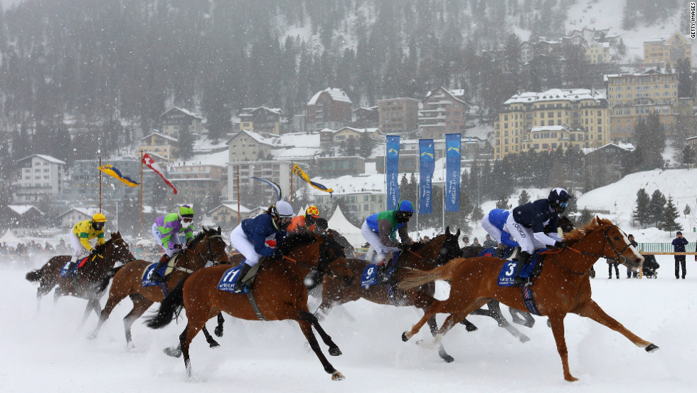 Horses for White Turf are brought to St Moritz from all over the world, including Hungary, Italy, France, Germany and the UK.