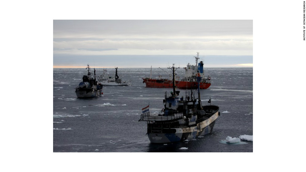 Sea Shepherd vessels surrounding a red supply vessel are pictured on Wednesday, February 20.  From lower right to left: SS Bob Barker, SS Steve Irwin, SS Sam Simon.