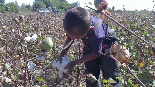 cfp pkg clancy uzbek cotton_00004025.jpg