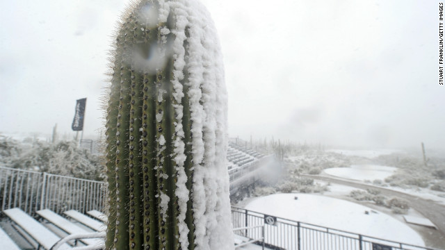MARANA, AZ - FEBRUARY 20:  A cactus is seen in the foreground as snow covers the first hole tee as play was suspended due to weather during the first round of the World Golf Championships - Accenture Match Play at the Golf Club at Dove Mountain on February 20, 2013 in Marana, Arizona.  (Photo by Stuart Franklin/Getty Images)