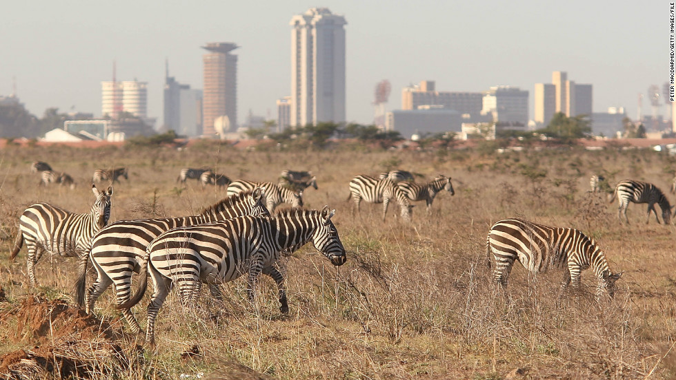 Nairobi National Park is located just 5 miles (8 km) outside Nairobi and overlooks the Kenyan capital.