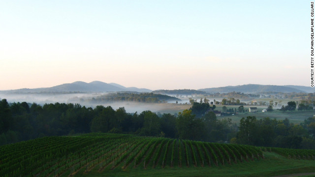 Family-owned Delaplane Cellars boasts panoramic views of the Northern Virginia mountains.
