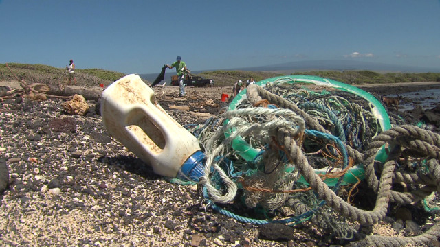 Hawaii deals with Japan's tsunami debris