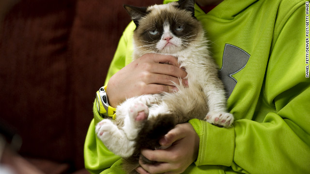 This is the feline face that's creating a stir online -- and live in Austin, Texas, too.