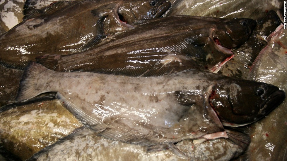 the effect of overfishing on bluefin tuna in marine life essay Scientists tell us that when a top predator like bluefin or another big fish is  depleted, that will affect the entire ecosystem, she said scientists.