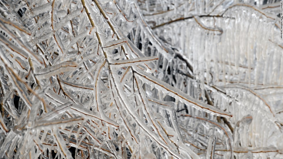 Trees are covered with ice on Saturday, March 16, near the town of Klina, Kosovo.