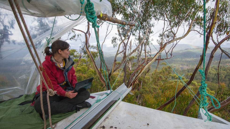 """During her """"tree sit"""", Miranda had a solar panel and internet to communicate to the world.  For all this technology and communication, the isolation of being alone in the tree was often overwhelming, she said.  This was alleviated in part by visits from family and other supporters."""