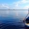 florida 500 paddling