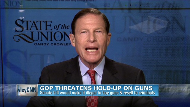Senator on gun control post-Newtown
