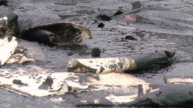 Oil 'river' flows through neighborhood