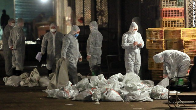 Poultry markets closed over bird flu