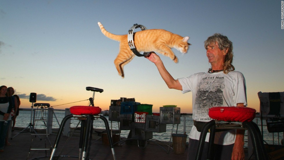 "<a href=""http://www.catmankeywest.com/"" target=""_blank"">Dominique LeFort</a> and his troupe of trained house cats entertain regularly at a nightly arts festival in Key West, Florida."