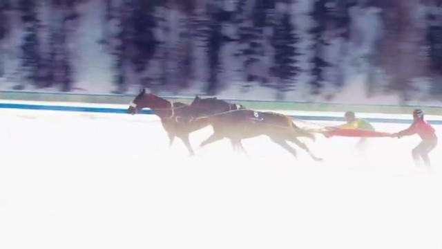 cnnee ag march skijoring st moritz_00023511.jpg