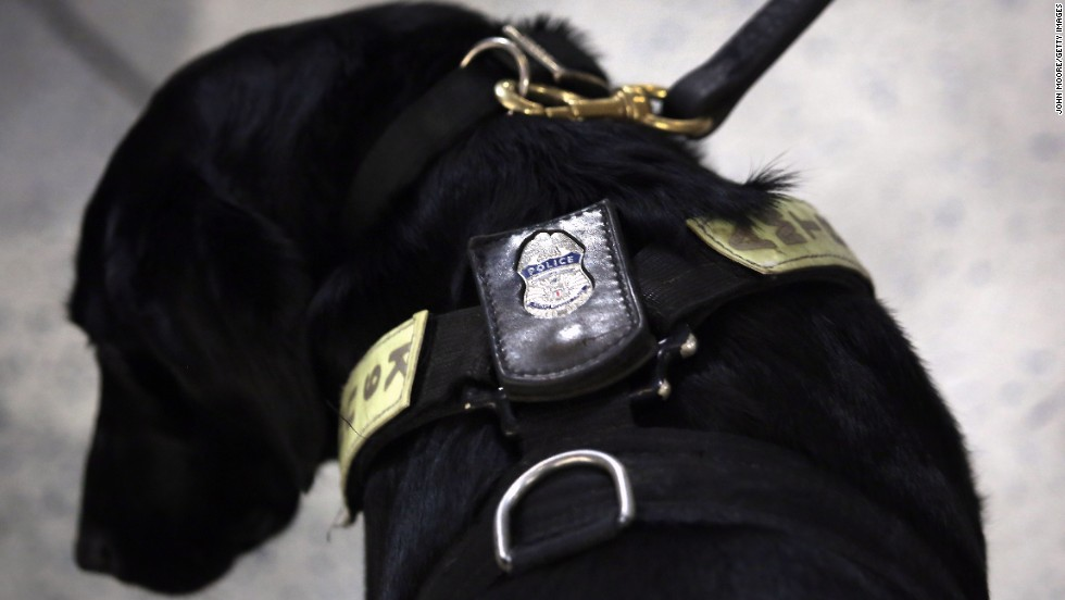 A police K-9 unit dog stands by as train passengers pass through Penn Station on Tuesday in New York.