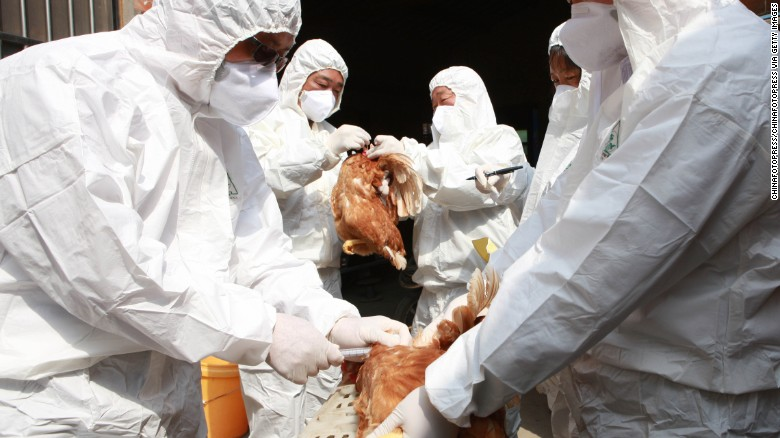 Bird flu found at Tyson chicken farm
