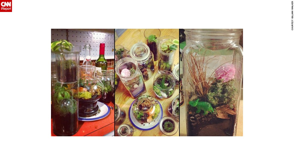 Walker shared several photos of her terrarium projects.