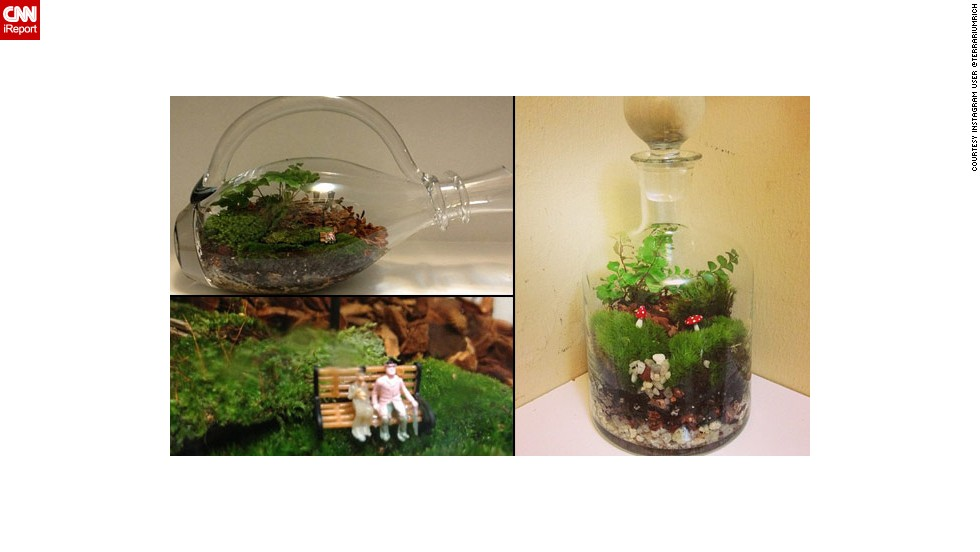 "Instagram user @terrariumrich shared photos of some of his <a href=""http://ireport.cnn.com/docs/DOC-959895"">bottled creations</a>."