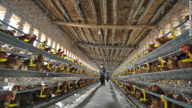 China's health ministry has confirmed 105 cases of H7N9 and 21 deaths from the virus.