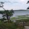 earth day cape cod nat seashore NPS