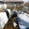 01 mw flooding 0423